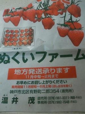 いちご4.jpg