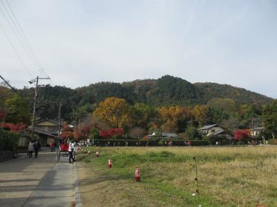 2012.11.28.5.jpg